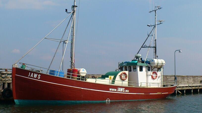 Helsingør fisketure Havfiskere lystfiskere Jaws