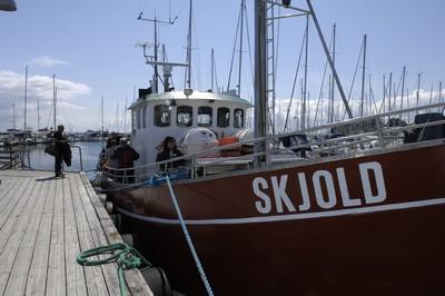Lystfiskeri Skjold Vedbæk